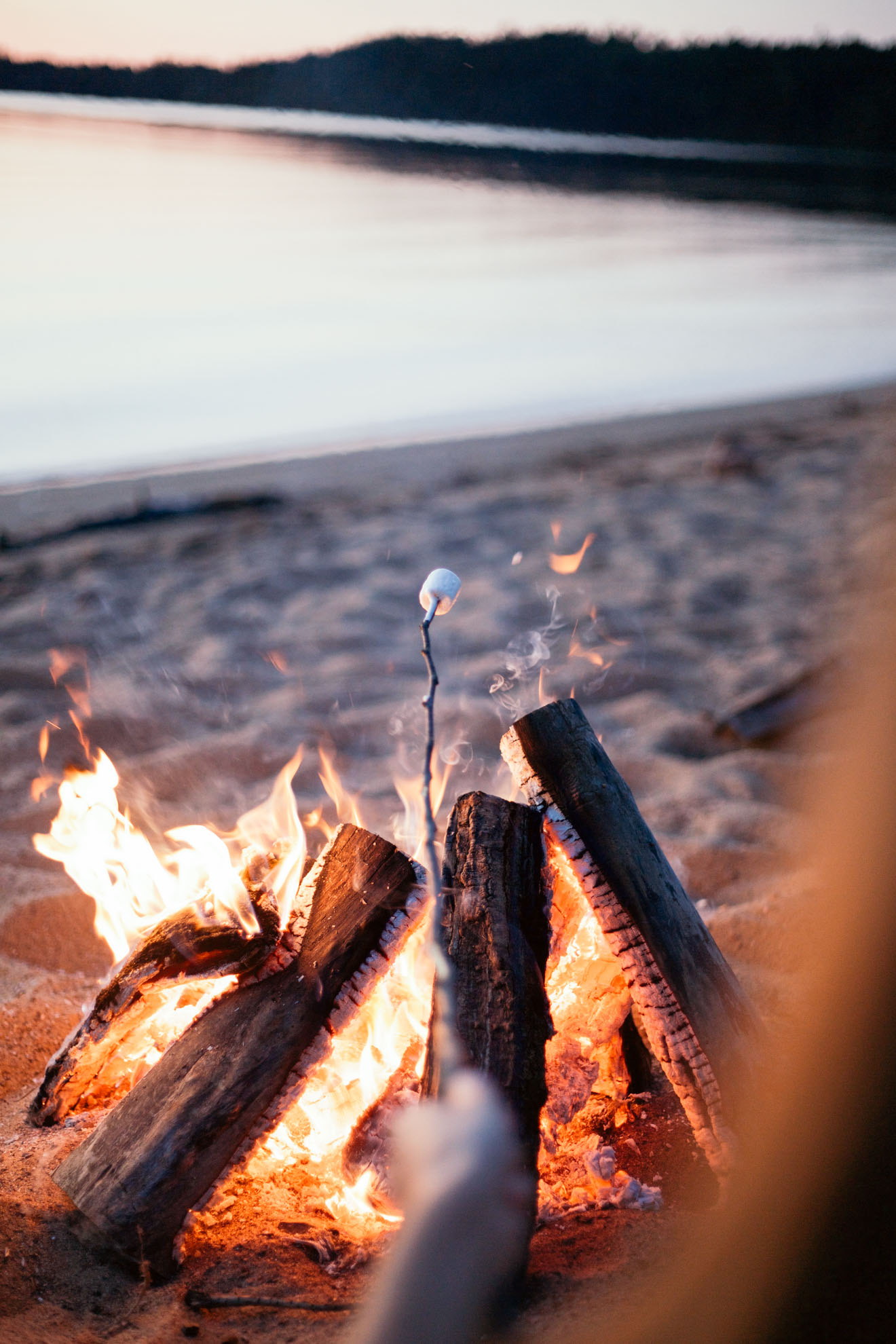roasting marshmallows over a campfire on a beach miss northerner