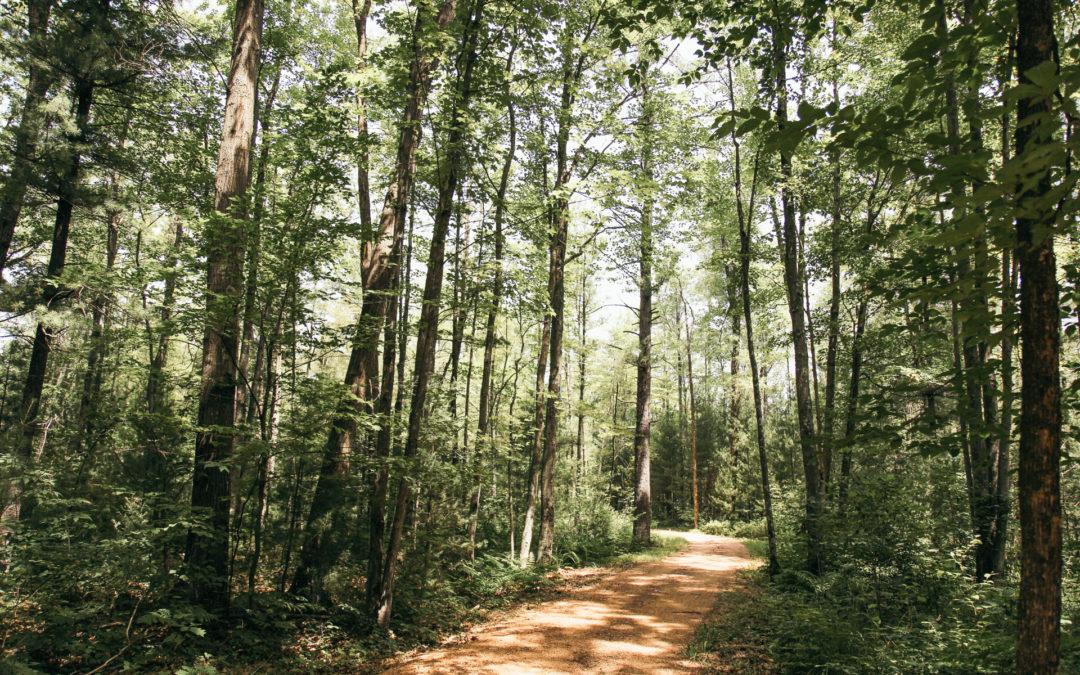 Biking the Green Circle Trail in Stevens Point Wisconsin