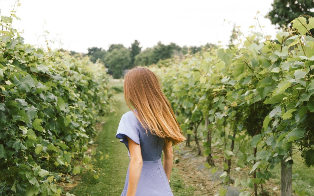 Burr Oak Winery