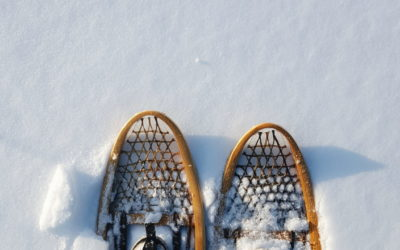 Wisconsin Snowshoeing Guide