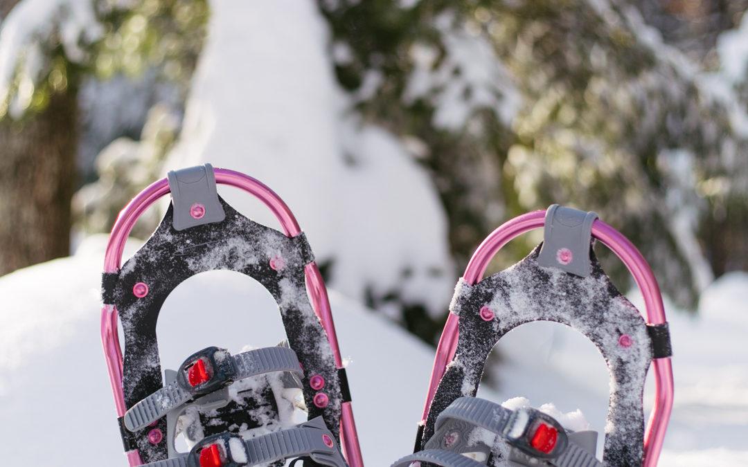 Gear Review: Pansel Snowshoes