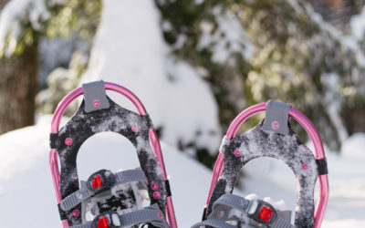 Gear Review: Pansel Snowshoes