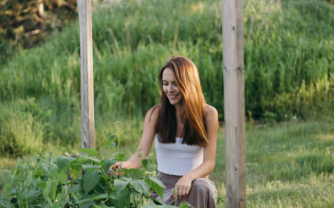Vegetable Garden Update